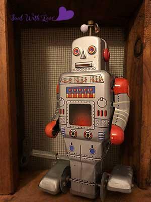SWLrobot2