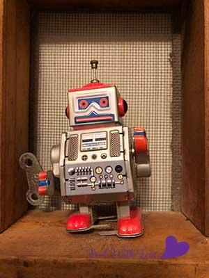 SWLrobot5